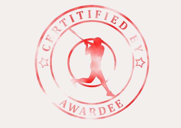 certificate-template-baseball_thumbs-classic-1-grey-bbsr Image