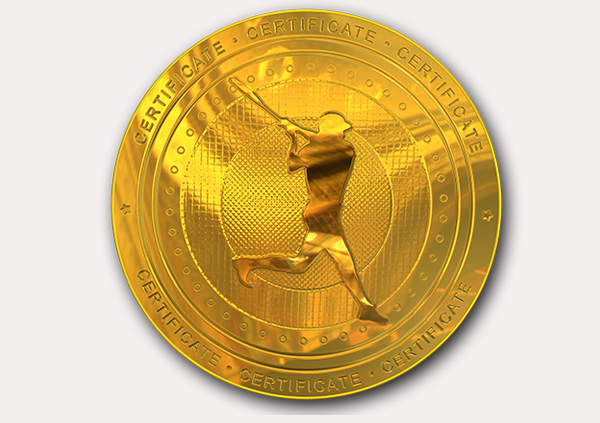 certificate-template-baseball_thumbs-modern-3-grey-bbmg Image