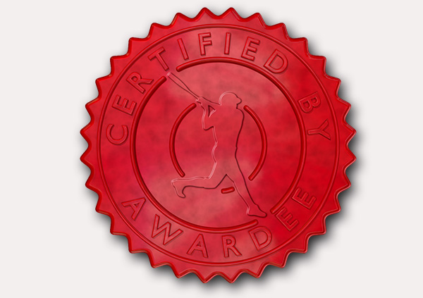 certificate-template-baseball_thumbs-modern-3-grey-gbsr Image