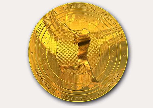 certificate-template-baseball_thumbs-modern-4-grey-rbmg Image