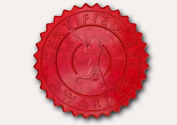 certificate-template-baseball_thumbs-modern-5-grey-dbsr Image