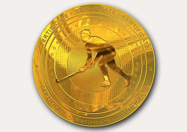 certificate-template-hockey-modern-2-grey-bhmg Image