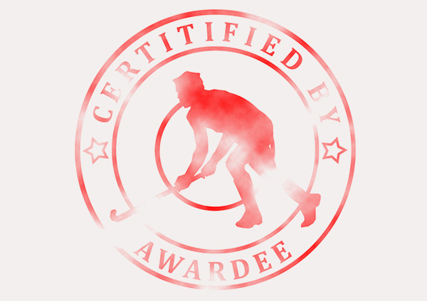 certificate-template-hockey-modern-3-grey-bhsr Image