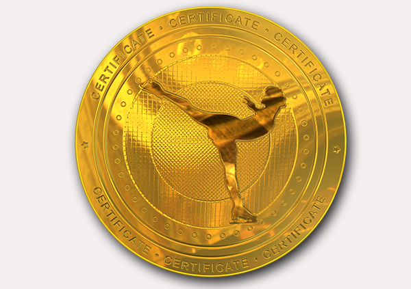 certificate-template-ice-skating-modern-1-grey-gimg Image