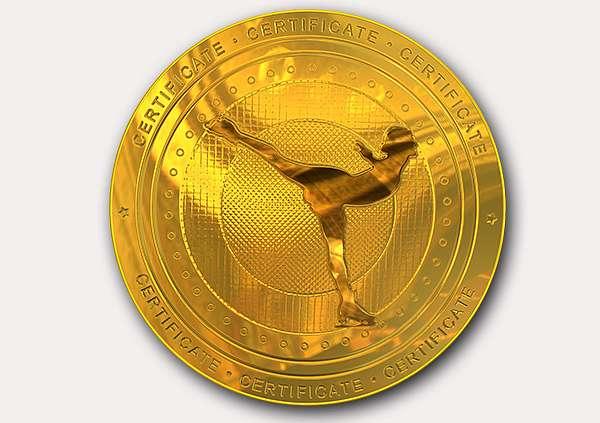 certificate-template-ice-skating-modern-2-grey-bimg Image