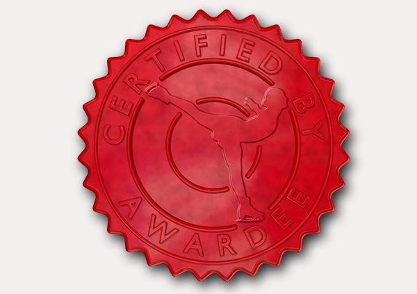 certificate-template-ice-skating-modern-3-grey-gisr Image