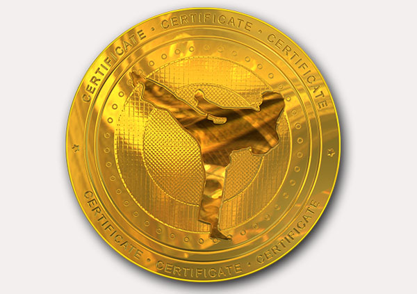 Free Martial Arts Certificate Templates Add Printable Badges Medals