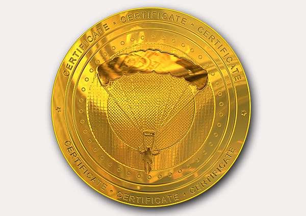 certificate-template-parachuting-classic-3-grey-bpmg Image