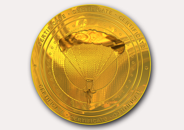 certificate-template-parachuting-classic-4-grey-dpmg Image