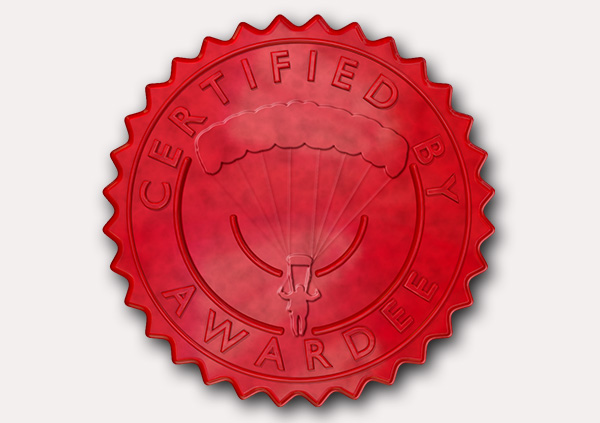 certificate-template-parachuting-modern-5-grey-dpsr Image
