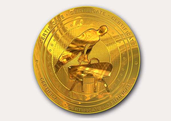 certificate-template-pommel-modern-2-grey-bpmg Image