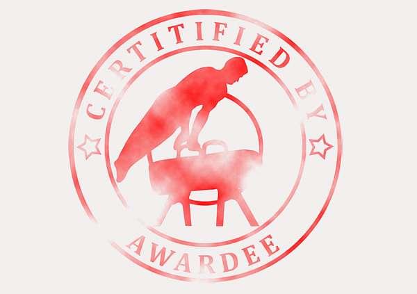 certificate-template-pommel-modern-3-grey-bpsr Image