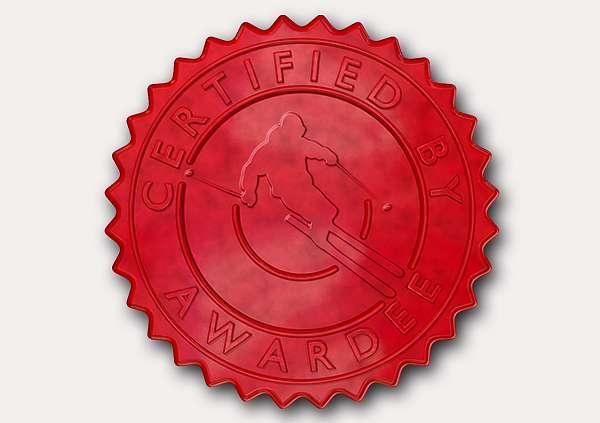 certificate-template-skiing-modern-5-grey-dssr Image