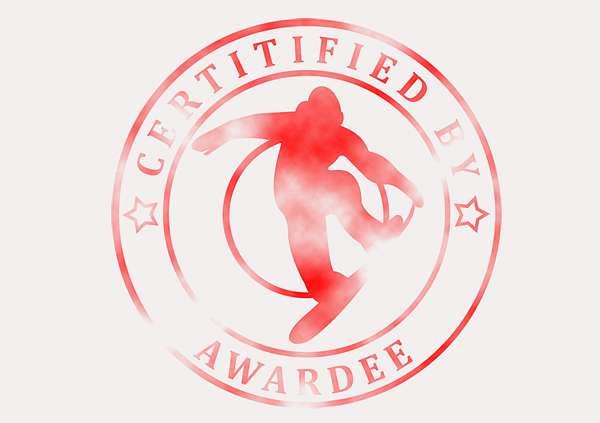 certificate-template-snowboarding-modern-3-grey-bssr Image