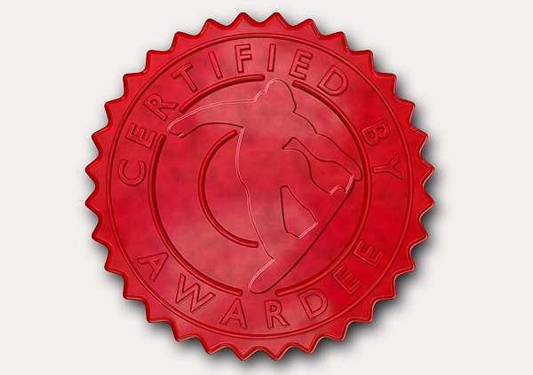certificate-template-snowboarding-modern-4-grey-rssr Image