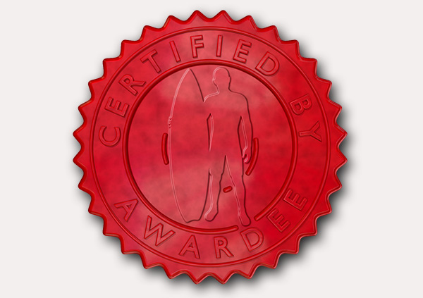 certificate-template-surfing-modern-5-grey-dssr Image
