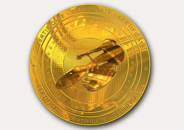 certificate-template-velodrome-classic-2-grey-dvmg Image