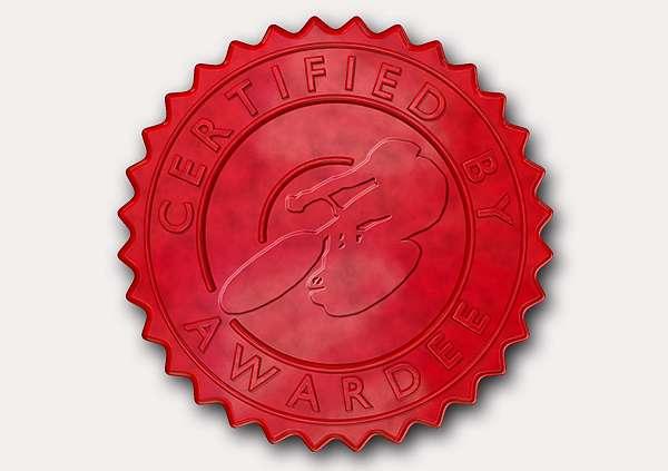 certificate-template-velodrome-modern-3-grey-gvsr Image