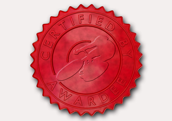 certificate-template-velodrome-modern-5-grey-dvsr Image