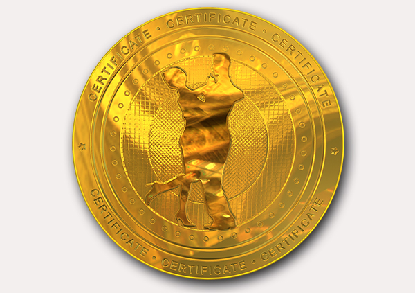 certificate-template-waltz-modern-2-grey-bwmg Image
